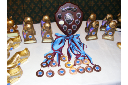 Kick up comp Medals
