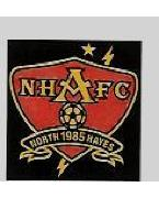 NORTH HAYES ACADEMICALS FC