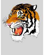 Park Tigers JFC