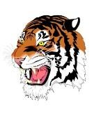 RCT Tigers FC