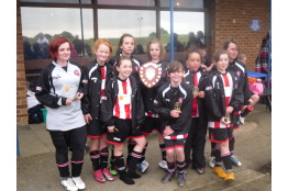 LEAGUE TOURNAMENT WINNERS2010/11